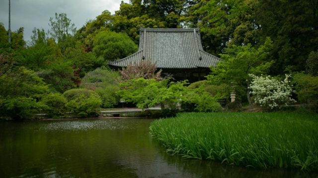長岳寺を写真を交えて紹介します(奈良県・天理市)