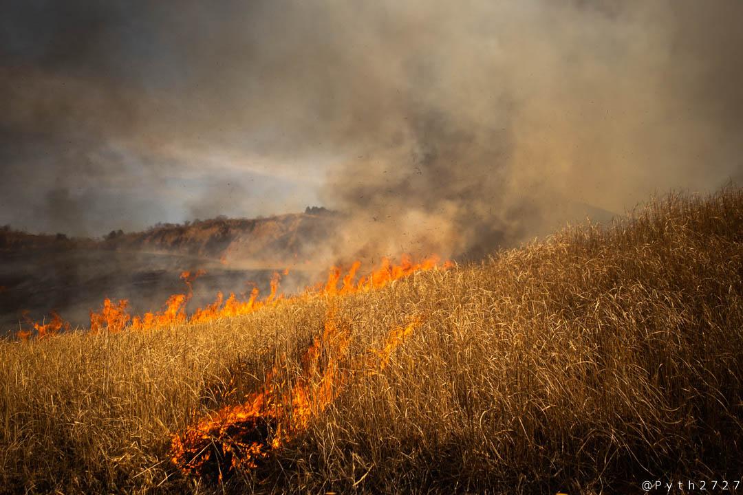 曽爾高原の山焼きを撮影しました