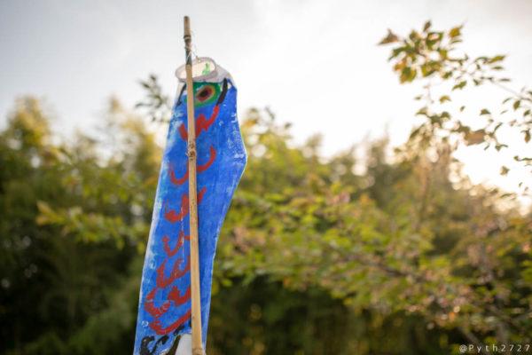 兵庫県黒滝の鯉のぼり