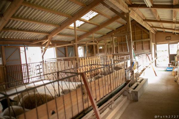 奈良県めえめえ牧場の厩舎