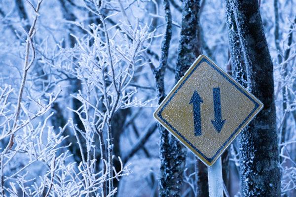 大台ヶ原の樹氷