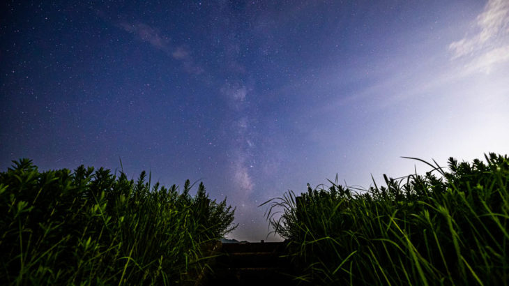 倉橋ため池から見える星空を紹介します(奈良県桜井市)
