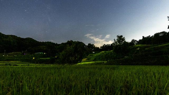 稲渕の棚田へ星空を撮影に行きました(奈良県明日香村)