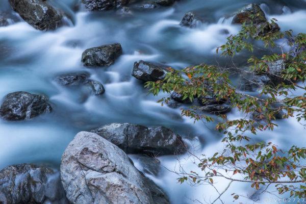 清納の滝付近で撮影した写真