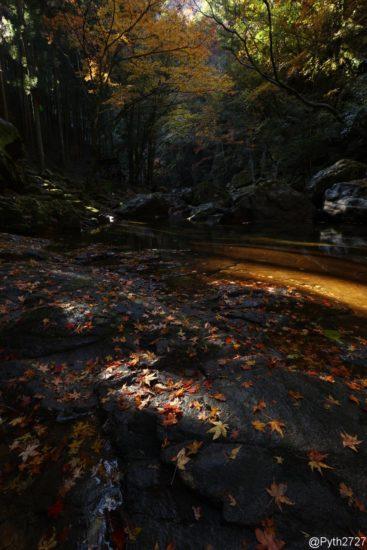 紅葉の赤目四十八滝
