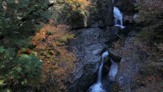 みたらい渓谷の紅葉を見に行きました(奈良県天川村)
