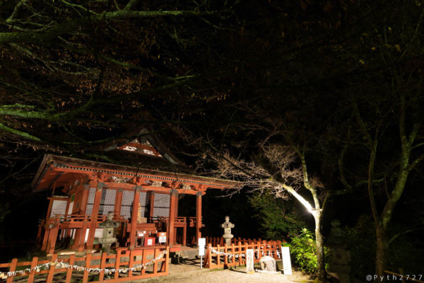 談山神社の紅葉ライトアップ
