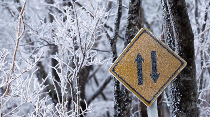 樹氷を探して、閉鎖された大台ケ原ドライブウェイを歩いた話