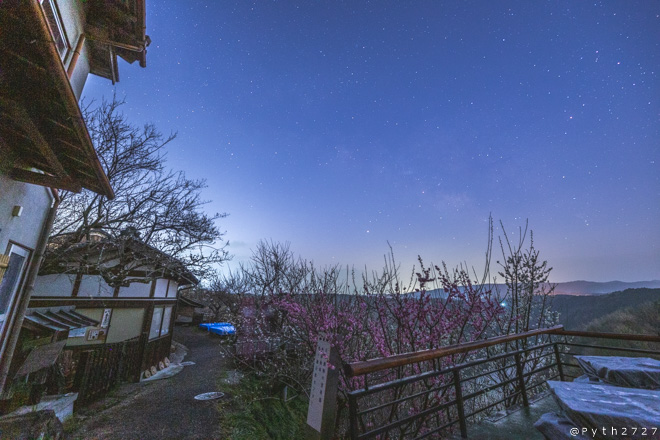 月ヶ瀬梅渓の薄明