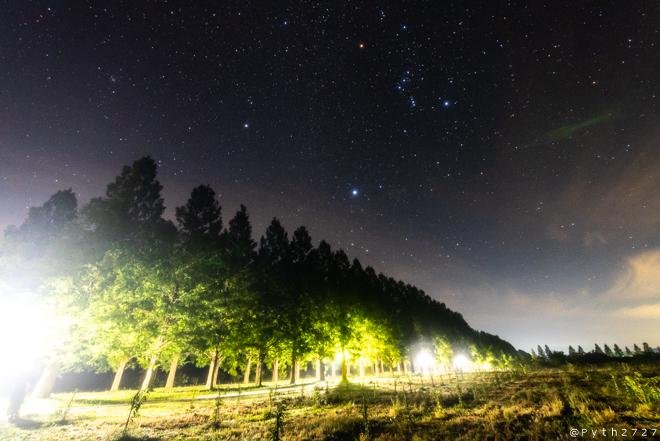 マキノ高原のメタセコイア並木へ星空の撮影に行きました(滋賀県高島市)