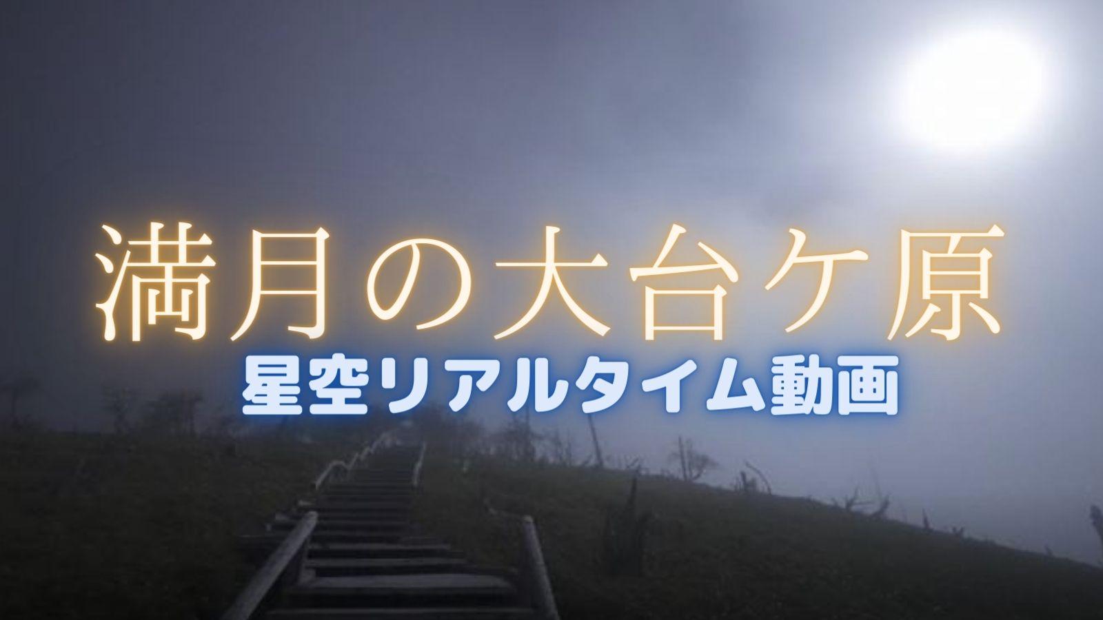 満月の大台ケ原は幻想的だった(正木峠・日出ヶ岳)【動画あり】