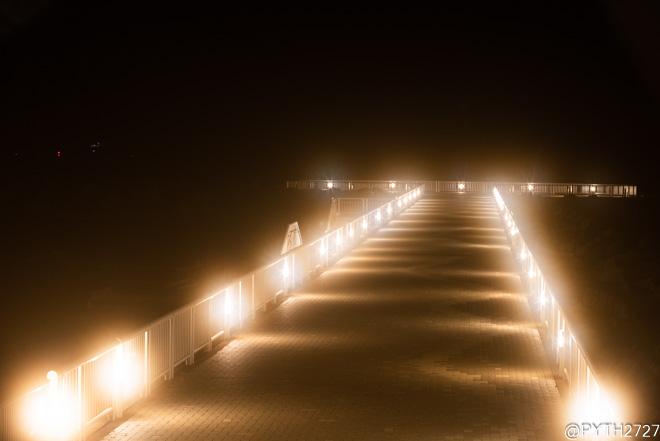 大矢浜 ライトアップ