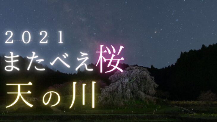 【2021】又兵衛桜の星空・天の川を動画撮影しました。(SONY a7SⅢ)