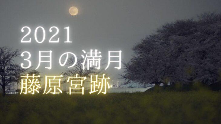 【動画】藤原宮跡の菜の花と桜と3月の満月(ワームムーン)