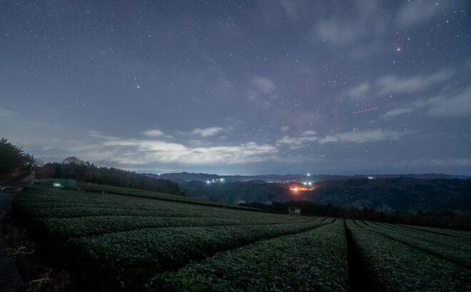 神野山の茶畑へ星空の撮影に行きました(奈良県山添村)