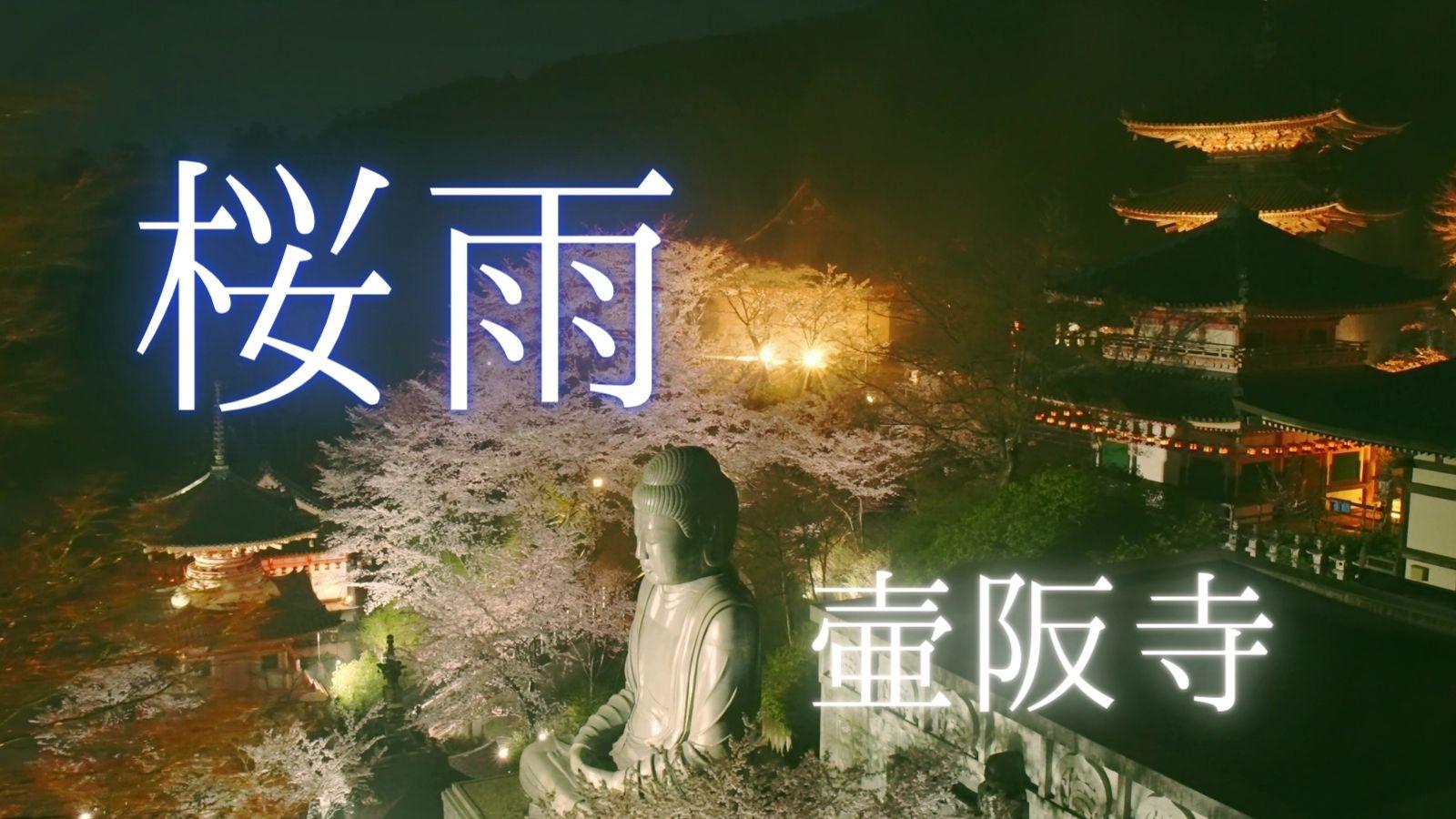 【動画】2021年雨と桜とライトアップの壷阪寺を動画撮影しました。(壺阪山 南法華寺)