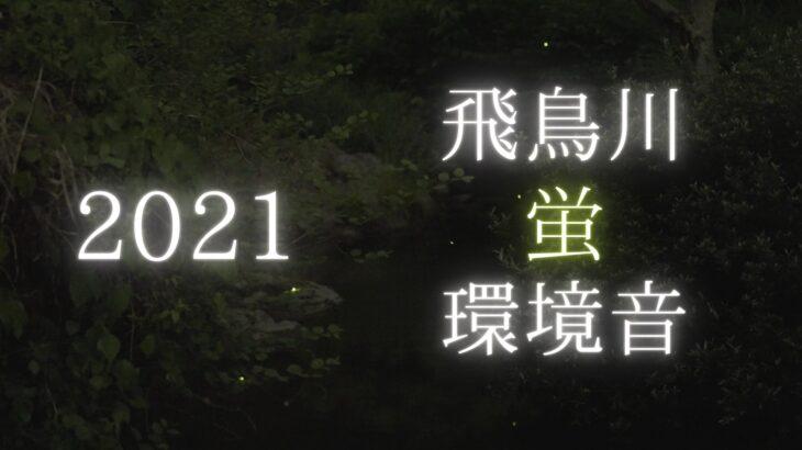 【2021】飛鳥川の源氏蛍を動画撮影しました(奈良県明日香村)