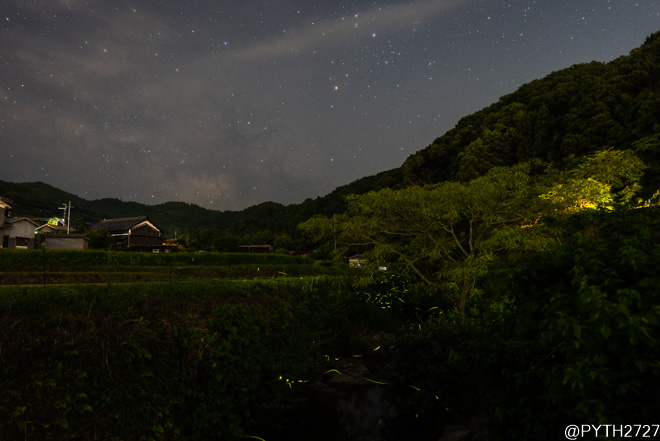 奈良県 蛍