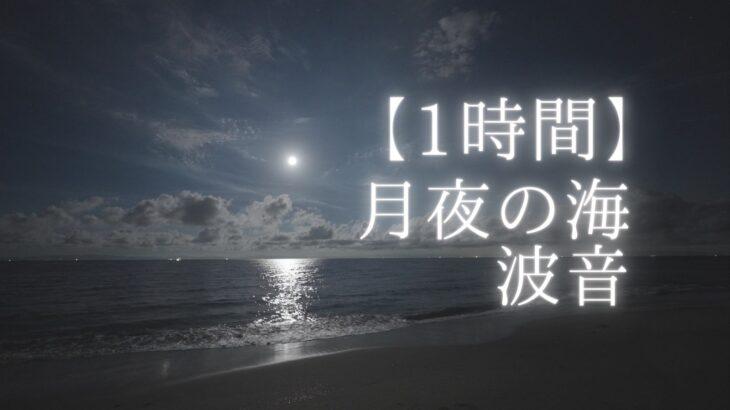 小野浦海水浴場で月と星空を撮影しました(愛知県美浜町)