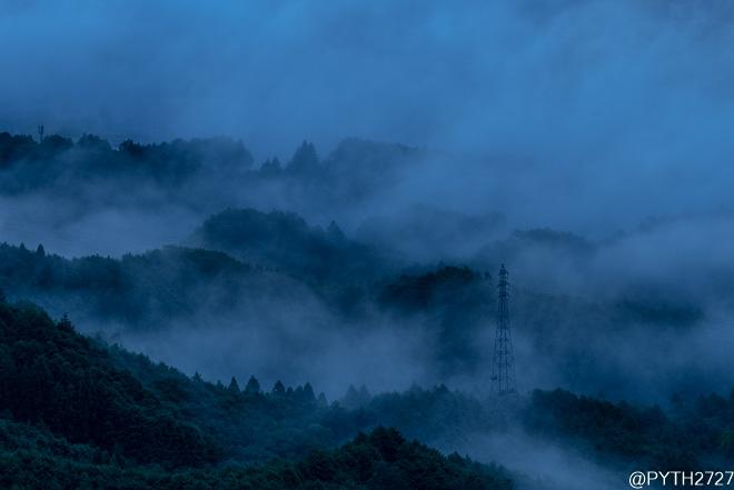 鳥見山公園 霧