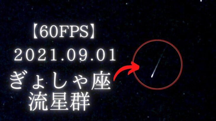 2021年9月1日の早朝、 ぎょしゃ座流星群を動画撮影してきました